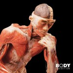 Body the Exhibition